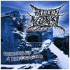FALLEN YGGDRASIL - Building up a ruin to come (CD)