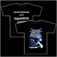 FALLEN YGGDRASIL - Building up a Ruin to come (Longsleeve L)